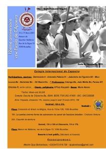 12-ieme-anniversaire--1A--vzw-E.CA.-Estagio-de-Capoeira-20